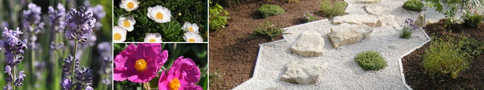 Aménagement paysager et floraux